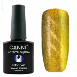 Гель-лак CANNI Cat Eye Магнитный гель-лак 451